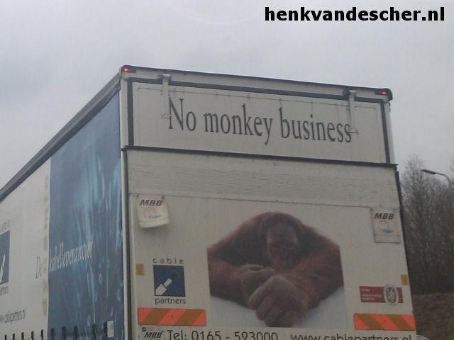 Cablepartners :: No Monkey Business